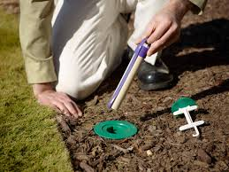 علاج التربة لمكافحة النمل الابيض
