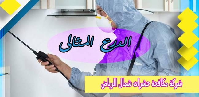 شركة مكافحة حشرات شمال الرياض 0552272331