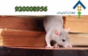 مكافحة الحشرات والفئران
