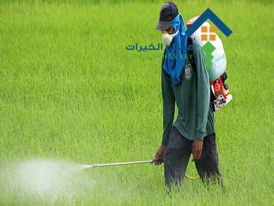 شركة رش مبيدات جنوب الرياض عمالة فلبينية