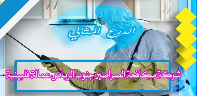 شركة مكافحة الصراصير جنوب الرياض عمالة فلبينية