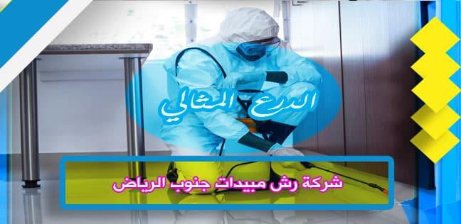 شركة رش مبيدات جنوب الرياض 920008956