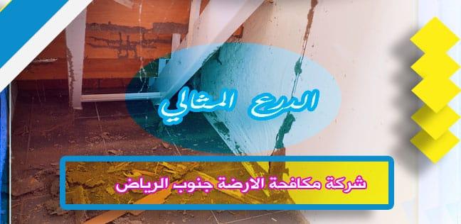 شركة مكافحة الارضة جنوب الرياض 920008956