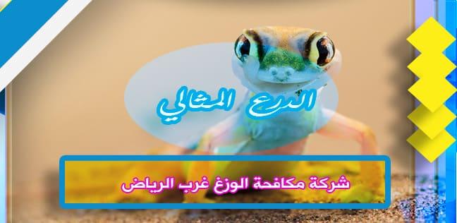 شركة مكافحة الوزغ غرب الرياض