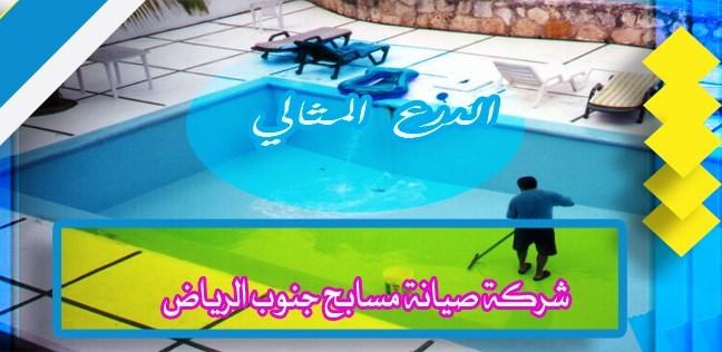 شركة صيانة مسابح جنوب الرياض 920008956