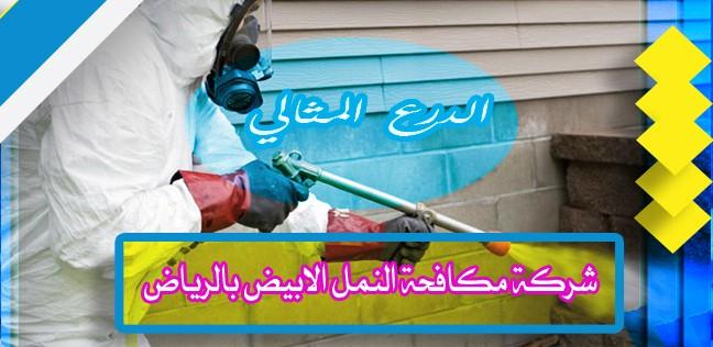 شركة مكافحة النمل الابيض بالرياض 0552272331