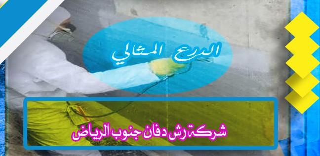 شركة رش دفان جنوب الرياض 920008956