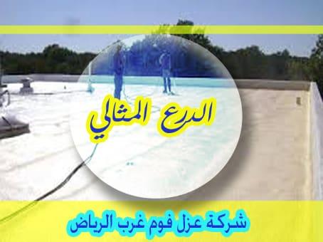 شركة عزل فوم غرب الرياض