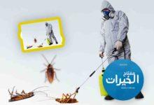 Photo of شركة مكافحة الصراصير بالرياض 920008956