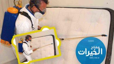 Photo of شركة مكافحة بق الفراش بالرياض