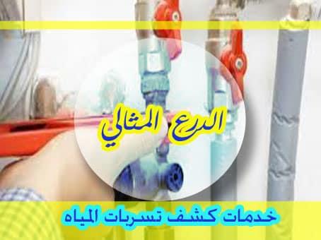 خدمات كشف تسربات المياه